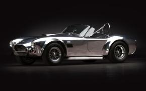 Картинка Shelby, кобра, форд, 2011, шелби, Cobra, AC Cars, 289, USRRC