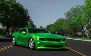 Картинка Chevrolet, Camaro, Suspension, Accuair