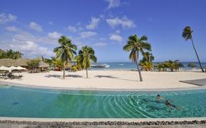 Картинка пляж, пальмы, отдых, бассейн, relax, экзотика