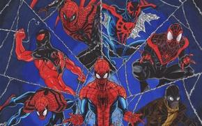 Картинка marvel comics, Spider-Man, Peter Parker, Scarlet Spider, Ben Reilly, Miles Morales, Ultimate Spider-Man, Spider-Man 2099, …