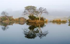 Картинка небо, горы, туман, озеро, дерево, развалины, руины