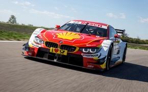 Картинка DTM, 2014, дтм, F82, BMW, бмв