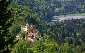 Обои Germany, Bavaria, Германия, замок, Schwansee Lake, озеро Шванзее, озеро, Замок Хоэншвангау, Hohenschwangau Castle, Бавария, лес