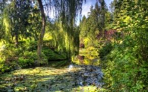 Картинка зелень, деревья, пруд, сад, Канада, кусты, Victoria, Butchart Gardens