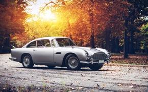 Картинка Aston, Martin, DB5