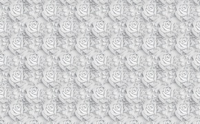 Обои цветы, розы, объем