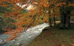 Картинка осень, лес, горы, река