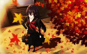 Картинка осень, листья, девушка, улыбка, ветер, школьница, art, kanoe yuuko, tasogare otome x amnesia, gensouki