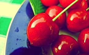 Обои ягоды, макро, вишня