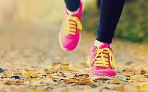 Картинка slippers, training, run