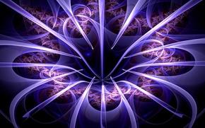 Картинка цветок, свет, линии, лепестки, объем