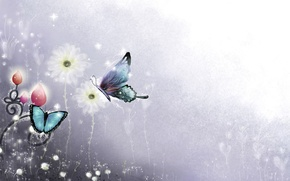 Картинка Цветы, Цвет, Минимализм, Бабочка, Фон, Голубой