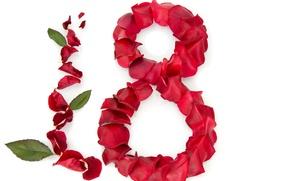 Картинка розы, лепестки, красные, белый фон, листочки, 8 марта, поздравление, женский день