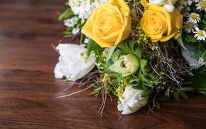 Картинка листья, цветы, розы, ромашки, букет, желтые, тюльпаны, белые