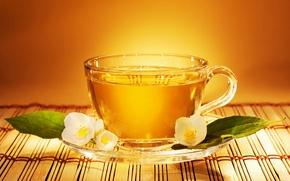Обои блюдце, чай, чашка, жасмин, tea, цветок, листья