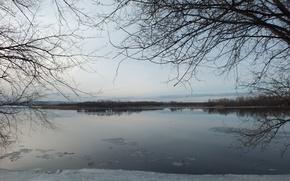 Картинка лед, деревья, природа, остров, Весна, Волга