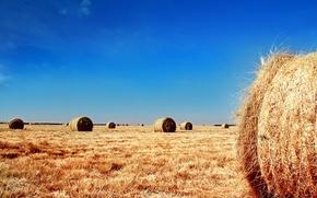 Обои небо, солома, поле, тюки