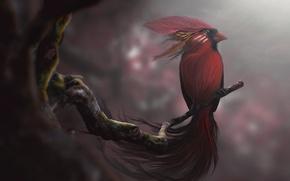 Картинка red, art, desktopography, spirit bird