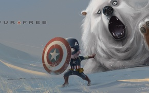 Картинка снег, медведь, арт, щит, captain america