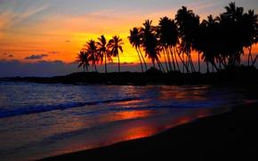 Картинка море, пляж, небо, облака, пальмы силуэты