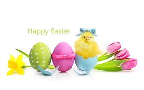 Картинка цветы, весна, Пасха, тюльпаны, flowers, tulips, spring, Easter, eggs
