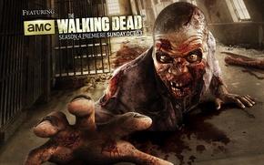 Картинка zombie, blood, biohazard, man, series, prison, yellow eyes, The Walking Dead, gallery, african american, tv …