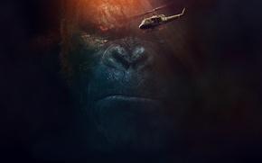 Обои Кинг Конг: Остров Черепа, Фильм, Kong: Skull Island, Movie