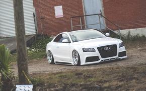 Картинка Audi, ауди, white, low, stance