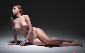 Обои грудь, фон, модель, тело, фигура, прическа, шатенка, обнаженная, ножки, на полу, позирует, сексуальная, Olga Kobzar