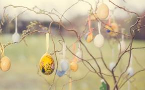Картинка ветки, праздник, яица
