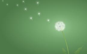 Картинка зеленый, минимализм, Одуванчик