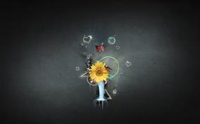 Картинка цветок, вода, круги, абстракция, стиль, пузыри, узоры, краски, сердце, colors, bubbles, flower, style, heart, water, ...
