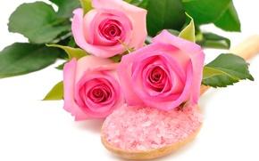 Картинка цветы, розовые розы, морская соль