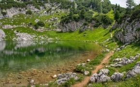 Картинка зелень, трава, горы, озеро, гладь, отражение, камни, холмы, тропинка