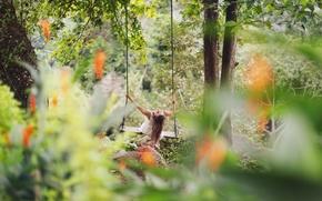 Обои photography, girl, качели, photographer, девушка, фотограф, David Olkarny, лес