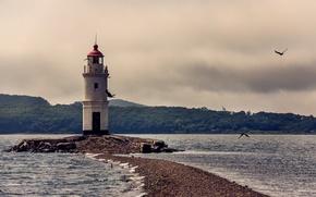 Картинка море, пляж, лето, маяк, чайки, коса, мыс, Владивосток, Эгершельд