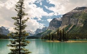 Картинка небо, облака, деревья, горы, озеро, остров, Канада, Альберта, Jasper, Maligne Lake