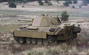 Картинка german, Panther, tank, sahara2014