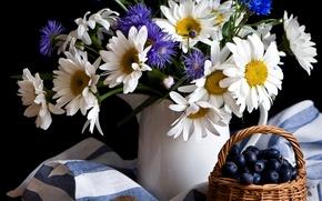 Картинка цветы, ягоды, ромашки, ваза, натюрморт, Anna Verdina