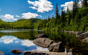 Обои зелень, лес, лето, небо, облака, деревья, озеро, камни, Канада, солнечно, Grands Jardins national park