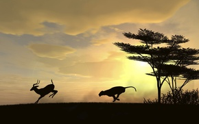 Картинка солнце, погоня, хищник, охота, косуля