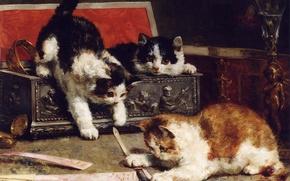 Обои взгляд, краски, мило, картина, веер, рыжий, котята, шкатулка, ваза, трое, kitten, чернобелый, three, painting