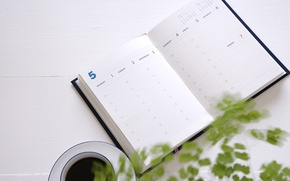 Картинка блокнот, кофе, ежедневник, чашка, растение