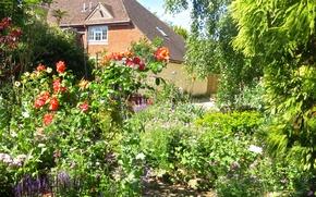 Картинка лето, цветы, дом, сад