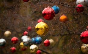 Картинка дерево, праздник, игрушки, новый год, рождество