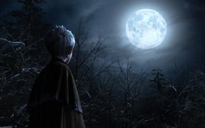 Картинка деревья, ночь, луна, мультфильм, хранители, Джек, снов, Ледяной