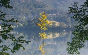 Обои осень, озеро, склон, деревья, горы