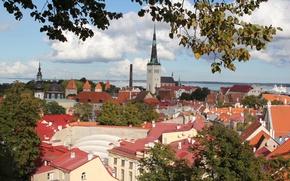 Обои Эстония, Таллин, крыши