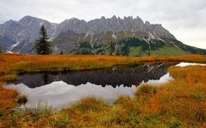 Картинка ель, горы, природа, деревья, озеро, вода, трава, осень