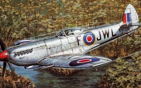 Картинка war, art, painting, aviation, ww2, Supermarine Spitfire Mk Xvi E